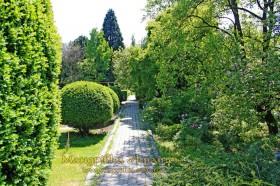 Ужгород. Ботанічний сад