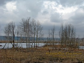 Ірдинь. Ірдинське болото