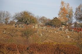 Вишнівець. Старий єврейський цвинтар